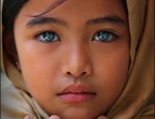 I – Facts: Amazing Eyes